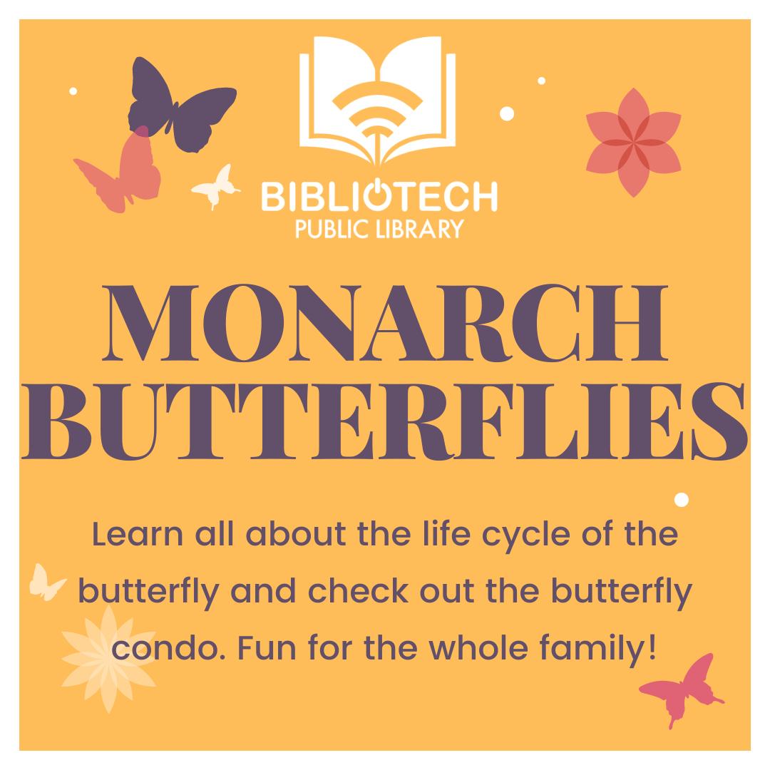 Monarch Butterfly Observation Station